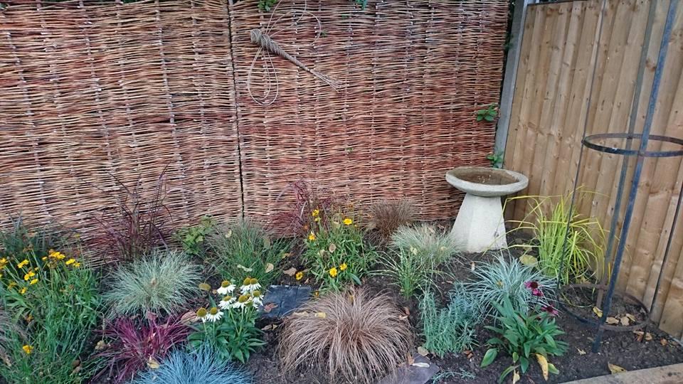 s Garden 5